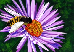 New England Aster- Muse Paintbar