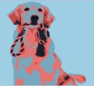 Paint Your Pet on 06/24 at Muse Paintbar Fairfax (Mosaic)