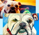 Paint Your Pet on 07/09 at Muse Paintbar Gaithersburg